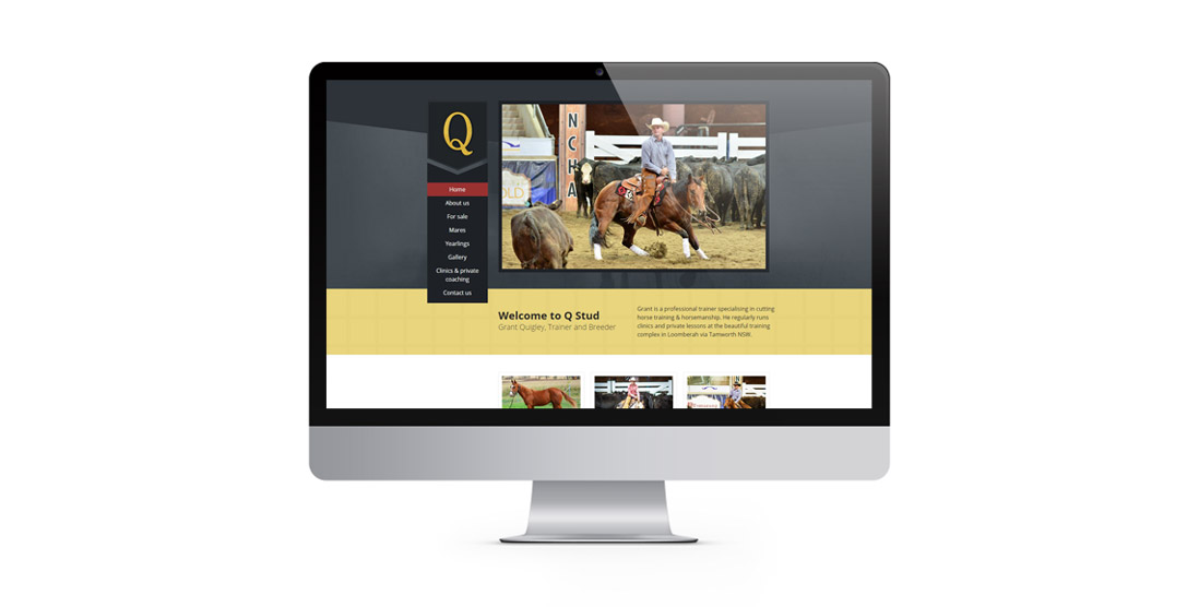 Q-Stud-website-in-a-large-screen